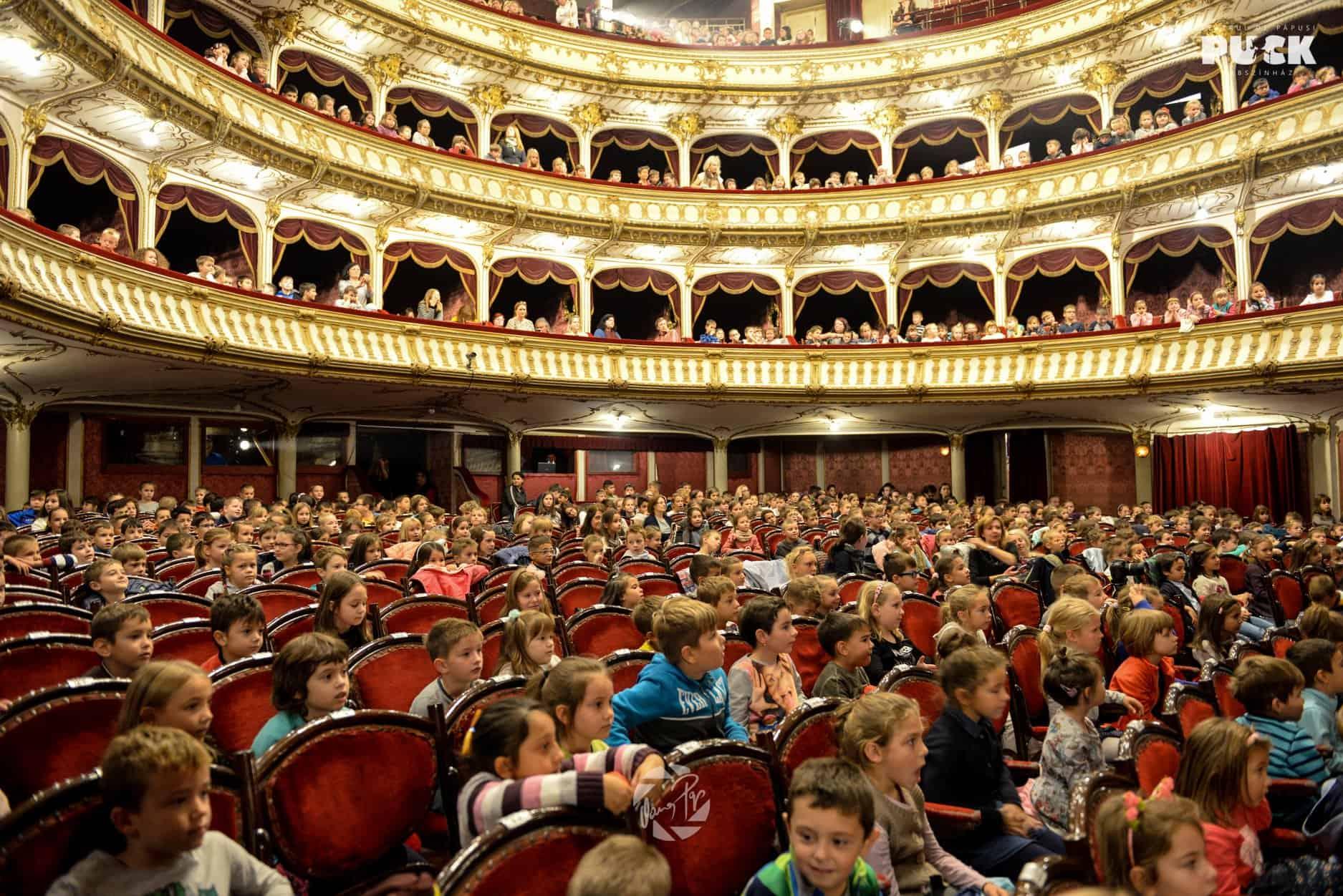 Muzicantii din Bremen PUCK Cluj 11