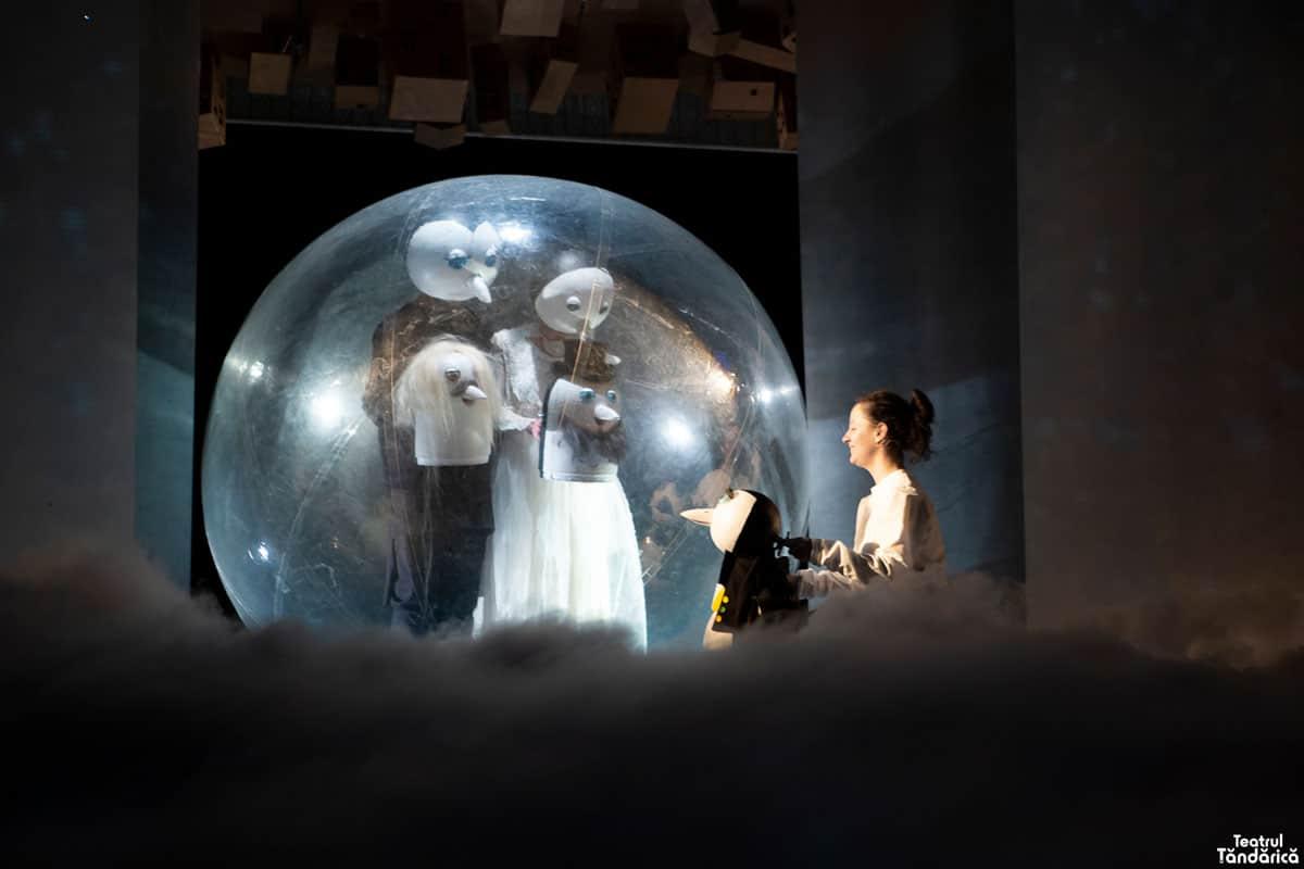 Apolodor Teatrul Tandarica 12